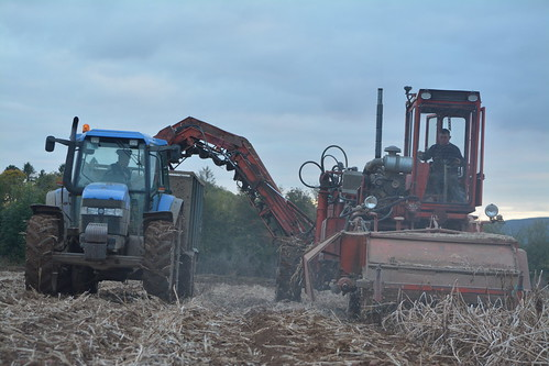VSS AMAC M2 Self Propelled Potato Harvester filling a trailer drawn by a New Holland TM135 Tractor
