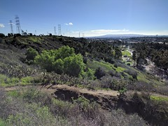 Along the Ridge (Kelson) Tags: losangeles hahnpark kennethhahnstaterecreationarea california hills trees