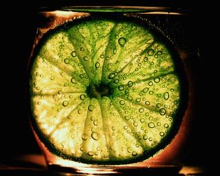 276 Lime
