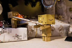 Christmas Delivery (Ed Swift) Tags: amazon present rudolf sigma1835mmf18art danboard sigma reindeer revoltech danbo decorations canon 7d2 christmaspresent 1835mmf18 1835mmf18art