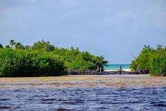 20161224 043 Cozumel Punta Sur Lagoon (scottdm) Tags: 2016 cozumel december ecopark lagoon mexico puntasur quintanaroo winter mx