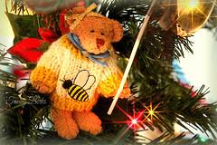 Sweet Sugarplum (Tammy Borko Photography) Tags: tammyborkophotography tammyborko borko photography christmas christmaslights pinetree teddybear decoration decorations december25th merrychristmas bee canoneosrebelt3 canon glowing sweetsugarplum