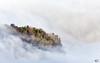 Wolkenlücke (art180) Tags: alpen art180 nebel wald weiss wolken hülle verhüllt jochberg bayern winter bavaria cloud fog dicht close shroud forst cover white insel island mantel hdr coat bäume trees sky himmel dense
