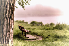 That Morning Glow (MarieFrance Boisvert) Tags: bench parc lake geese et easterntownships parcjacquescartier sherbrooke dawn pastel outdoor