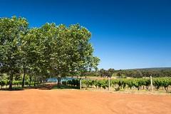 Winery near Margaret River (bayernphoto) Tags: australien western australia westaustralien oz down under winery weinberg margaret river yallingup weinbau genuss trauben grape