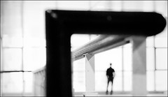 F_47A1519-BW-1-Canon 5DIII-Canon 70-300mm-May Lee 廖藹淳 (May-margy) Tags: 望 maymargy bw 黑白 扶手 帷幕牆 窗戶 街拍 streetviewphotographytaiwan 線條造型與光影 linesformandlightandshadows 天馬行空鏡頭的異想世界 mylensandmyimagination 心象意象與影像 naturalcoincidencethrumylens 新北市 台灣 中華民國 taiwan repofchina humaningeometry f47a1519bw1 portrait silhouette glass wall rail windows 模糊 散景 blur bokeh newtaipeicity canon5diii canon70300mm maylee廖藹淳
