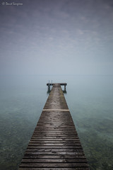Silence At The Lake. (dasanes77) Tags: canoneos6d canonef1635mmf4lisusm tripod landscape seascape waterscape cloudscape longexposure silence lake sirmione gardalake italy tranquility peace water transparentwater wood pier walkway cormorants fog mist