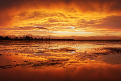 Fire On Earth || SCARBOROUGH || QUEENSLAND (rhyspope) Tags: australia aussie cld queensland scarborough redcliffe storm sky cloud sunrise sunset weather reflection water sea ocean ripple sand beach rhys pope rhyspope canon 5d mkii silhouette marine