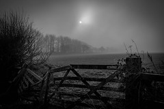 Mist The Road (nds6346) Tags: fields blackandwhite monochrome countryside fog mist misty rural england cheshire nikon nikond5300 nikonphotography
