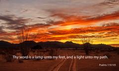 My Path (http://fineartamerica.com/profiles/robert-bales.ht) Tags: arizona desert foothills haybales land landscape people photo places states sunsetorsunrise scripturephotos psalms biblephotographs psalmsphotographs spiritualphotographs versephotographs textphotographs heavenphotographs religionphotographs greetingcards religiouscards sunrise sunset redsky sunrays twilight yellow clouds panoramic southwestphotography beautiful sensational spectacular sceniclandscapephotography peaceful surreal magical spiritual inspiring inspirational yuma red sonoradesert robertbales