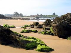 Playa de El Barrigón, Colunga, Asturias, España. (PGARCIA.) Tags: playadeelbarrigón elbarrigón laisla colunga asturias españa caminodesantiagodelnorte playas mar costa arena tiempolibre naturaleza spain playa