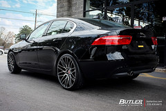 Jaguar XE with 20in Savini BM13 Wheels and Pirelli P Zero Tires (Butler Tires and Wheels) Tags: jaguarxewith20insavinibm13wheels jaguarxewith20insavinibm13rims jaguarxewithsavinibm13wheels jaguarxewithsavinibm13rims jaguarxewith20inwheels jaguarxewith20inrims jaguarwith20insavinibm13wheels jaguarwith20insavinibm13rims jaguarwithsavinibm13wheels jaguarwithsavinibm13rims jaguarwith20inwheels jaguarwith20inrims xewith20insavinibm13wheels xewith20insavinibm13rims xewithsavinibm13wheels xewithsavinibm13rims xewith20inwheels xewith20inrims 20inwheels 20inrims jaguarxewithwheels jaguarxewithrims xewithwheels xewithrims jaguarwithwheels jaguarwithrims jaguar xe jaguarxe savinibm13 savini 20insavinibm13wheels 20insavinibm13rims savinibm13wheels savinibm13rims saviniwheels savinirims 20insaviniwheels 20insavinirims butlertiresandwheels butlertire wheels rims car cars vehicle vehicles tires
