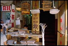 Chinatown (Chris Protopapas) Tags: film analog pentax ektachrome chinatown newyorkcity storefront chinese newspapers parrot cage boy doorway