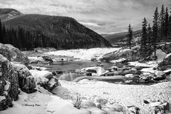 Elbow Falls Mono (Canon Queen Rocks (1,340,000 + views)) Tags: braggcreek winter snow trees waterfalls water ice scenery scenic landscape river elbowfalls nat alberta canada bw blackandwhite rocks