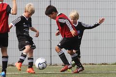 Feriencamp Drochtersen 30.08.15 - b (63) (HSV-Fuballschule) Tags: bis vom hsv 3008 feriencamp fussballschule drochtersen 02092015
