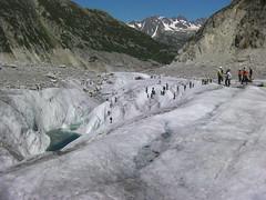 Grand_Parcours_Alpinisme_Chamonix-Edition_2014_ (53)