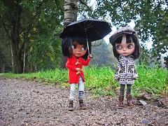 Autumn Walk With Kai And Cotton