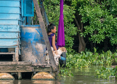 A dog's life (tmeallen) Tags: trees woman dog water river colorful cambodia small guard houseboat cutedog pontoons tonlesap floatingvillage watchful brightblue monsoonseason waterhyacinths siemreapriver dogonboat magentaumbrella