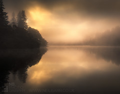 Camhanaich II (GenerationX) Tags: trees mist water silhouette fog sunrise reflections landscape dawn mirror scotland shadows cross unitedkingdom scottish neil calm gb marker trossachs barr gloaming aberfoyle lochard nohorizon kinlochard lochardforest canon6d