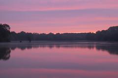 La vie en rose ** (Titole) Tags: longexposure morning pink mist reflection sunrise dawn 6000000 explored friendlychallenges thechallengefactory bassindetrévoix trévoix titole nicolefaton