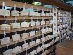 201509131 Tokyo Meiji-Jing Gyen (taigatrommelchen) Tags: urban japan temple tokyo shibuya sight 20150939