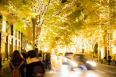 The street is illuminated. (Mototaka Tsujima) Tags: street winter japan night zeiss tokyo nikon view 14 85mm 日本 東京 冬 marunouchi 夜 丸の内 d610 ストリート ニコン nakadori zf2 プラナー planart1485 カールツァイス