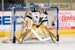 """Nailers_Walleye_1-6-17-6 • <a style=""""font-size:0.8em;"""" href=""""http://www.flickr.com/photos/134016632@N02/31319172364/"""" target=""""_blank"""">View on Flickr</a>"""