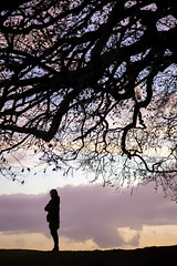 Under the Wishing Tree (Julian Pett) Tags: avebury wiltshire wishing tree stone circle solstice pagan witch magic wish druid silhouette sunset twig leaf earth goddess mother branch