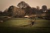 follow the trail (bjdewagenaar) Tags: outdoor nature trees winter people sony a58 alpha minolta secret handshake 28135mm gorinchem gorcum dutch holland raw lightroom