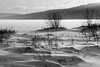 No Distractions (Bert CR) Tags: algonquinpark algonquinprovincialpark ontarioparks snow winter cold snowandice snowing blackandwhite blackwhite bw monochrome outdoors snowshoeing skancheli lightandshadow