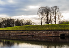 Isolated (Robby van Moor) Tags: naarden vesting fortress trees isolation isolated