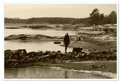 Beach by Lake Vänern; January 2017 (Börje Tröttne) Tags: vänern lakevänern säffle duseudde