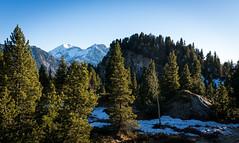 Balade vers le lac Achard (M'sieur Sub !) Tags: chamrousse isère france