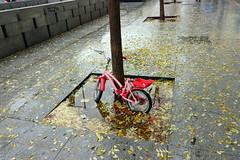 Madrid_0195 (Joanbrebo) Tags: plazadelascortes madrid spain españa streetscenes street carrers calles cityscape canoneos80d eosd autofocus efs1018mmf4556isstm lunaphoto urbanarte