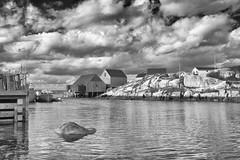 Peggy's Cove, Nova Scotia (Thatsanotherdory) Tags: cove fishing iconic monochrome maritimes canada scenic explore