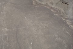 Collibri Picaflor / Humming Bird Overflight Lineas de Nazca Peru (roli_b) Tags: colibri picaflor humming bird hummingbird overflight nazca lines nasca lineas peru ica aerial view sobrevuelo luftbild travel tourism turismo picture windows seat