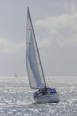 At Sea (sequentialogic) Tags: river boat cornwall sailing yacht fal carrickroads