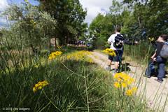 sentiero delle campagne calitrane (Vito Galgano) Tags: nature natura orata escursione calitri