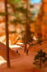 BRY_1416-tiltshift-2914x4400 (Kevin MG) Tags: usa girl mom toy utah miniature ut hiking daughter bryce nationalparks tiltshift tiltshiftmaker