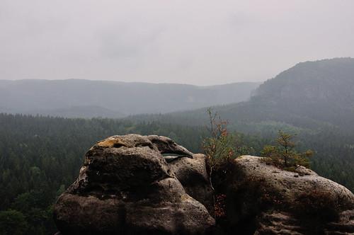 Blick vom Kuhstall