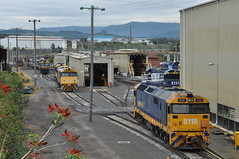 Loco Port Kembla (highplains68) Tags: railroad train rail railway australia nsw newsouthwales aus sydneytrains 8005 8118 81class 80class