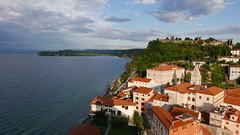 Piran, Slovenia (andrewobrien2) Tags: sea water mediterranean panasonic slovenia piran peninsula adriatic istria istrian lx100