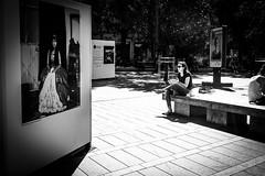 Square Charles de Gaulle (x) (Solylock) Tags: trees blackandwhite bw woman sun man tree men monochrome hat sunglasses festival bar gris restaurant glasses soleil photo chair women child noiretblanc photos map femme nb arbres chapeau toulouse enfant lunettes arbre garonne septembre chaise hommes femmes homme fleuve creperie charpe 2015 photographies lacreperie crperie festivalphoto toulousaines toulousains festivalmap lacrperie festivaphotographique