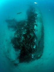 Midnight Hour Shipwreck, Catalina Island (kteich) Tags: california island catalina scuba diving socal shipwreck shootout 2015 midnighthour