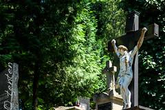 Lviv (Ca Bart) Tags: lviv ukraine lvov ukraina ukrajina україна ucraina lemberg 乌克兰 украина львов ucrânia ウクライナ ukrayna 우크라이나 ucraïna 烏克蘭 אוקראינה לבוב اوکراین 利沃夫 リヴィウ welwowie لووف 리에브