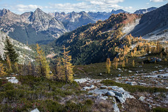 20151003-IMG_9898 (Ken Poore) Tags: washington hiking cascades larches northcascades geolocation maplepassloop geocity camera:make=canon exif:make=canon goldenlarches geocountry geostate exif:lens=ef24105mmf4lisusm exif:focallength=24mm exif:aperture=ƒ80 exif:model=canoneos6d camera:model=canoneos6d exif:isospeed=320 geo:lon=12076853 geo:lat=48504428333333
