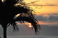 DSC_0279 (victoriapalomarc) Tags: kitesurf surfspot sumbawa