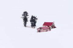 Secluded (arcreyes [-ratamahatta-]) Tags: red house winter japan white arcreyes pink biei snow tree isolation hokkaido pinkhouse redhouse