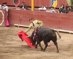 Dobln de Morante en Lima (Vladimir Tern A.) Tags: peru gente lima bulls toros costumbres acho bullfighting bullfighters tauromaquia tradiciones toreros matadores corridasdetoros taurinos plazasdetoros feriataurina culturayarte