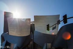Walt Disney Concert Hall (Raf Debruyne) Tags: california city sky usa reflection canon eos losangeles unitedstatesofamerica 5d waltdisneyconcerthall waltdisney concerthall mk3 mark3 24105mm 24105mmf4 canonef24105mmf4lusm canon24105mmf4 5dmkiii 5dmarkiii rafdebruyne debruynerafphotography debruyneraf canoneos5dmkill